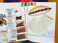 Zeichnung zur Herstellung von Kakao und Schokolade